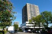 Haarlem2011
